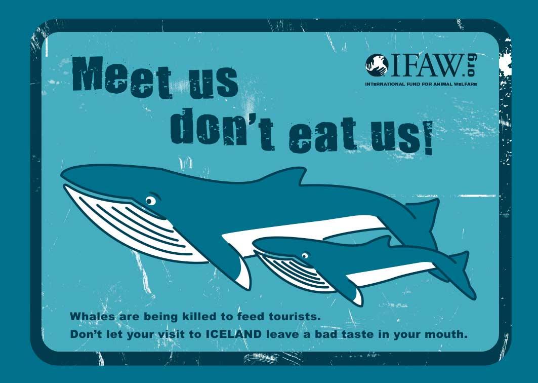 Banner contra a caça de baleias