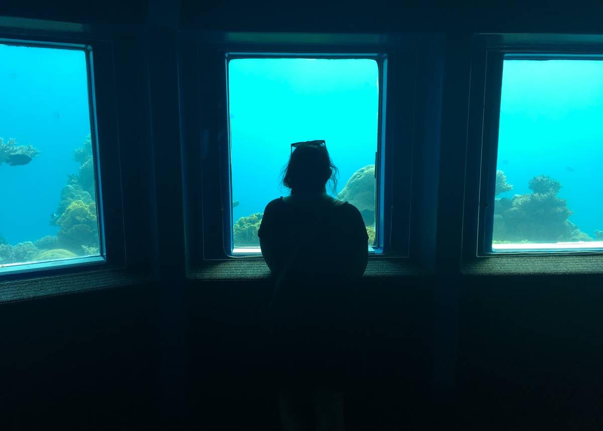 o que fazer em eilat: imagem da Tati no observatório submarino