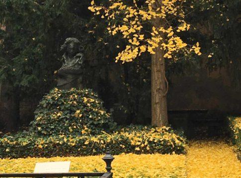 busto de beethoven no museu que era sua antiga casa em bonn