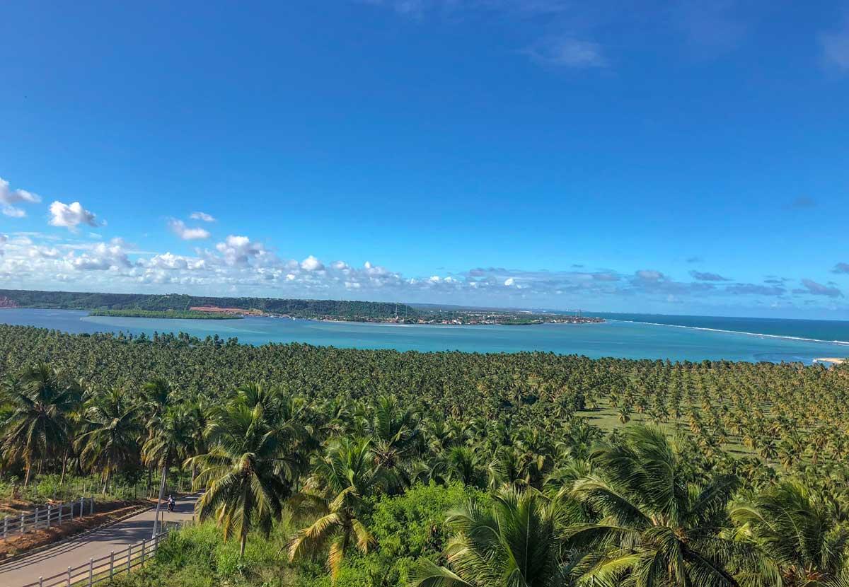 vista do alto do mirante do gunga em alagoas, na praia do gunga