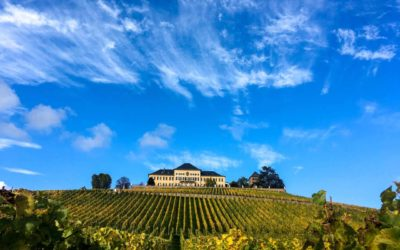 Experiência de wine tasting em Rüdesheim, Alemanha