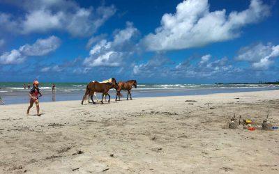 Paripueira: a praia do AL pra se apreciar em câmera lenta